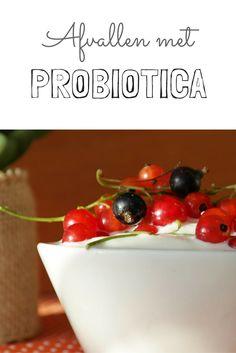 Probiotica en de spijsvertering staan in voor de gezondheid van het hart en de immune functie, om maar enkelen te noemen die je kan verbeteren.