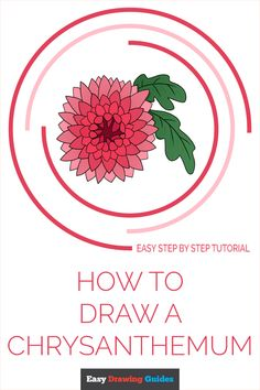Learn to draw a chrysanthemum. This step-by-step tutorial makes it easy. Kids and beginners alike can now draw a great chrysanthemum.