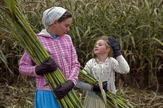 Mennonite Just Plain Sadie Book 4 in the Wells Landing Amish romance Series by Amy Lillard  http://www.amywritesromance.com