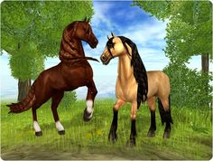 star stable horses | magnificent andalusians best regards the star stable team