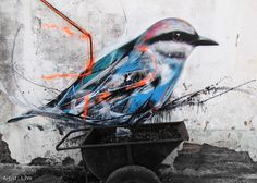 l'ornithologue du graffiti Bird Street Art, Tag Street Art, Graffiti Art, Installation Street Art, Street Tattoo, Art Et Illustration, Illustrations, Street Artists, Art Google