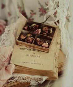Shabby, roses, lace and old books! By Nelly Vintage Home Rose Cottage, Shabby Chic Cottage, Cottage House, Cottage Style, Book Flowers, Dried Flowers, Shabby Vintage, Vintage Roses, Vintage Romance