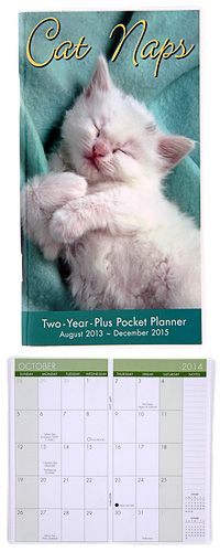 Cat Naps 2014-2015 Planner at The Animal Rescue Site Mary Grace