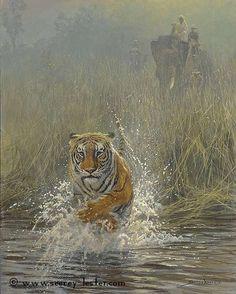 Running scared    Not Just Wildlife Art of John & Suzie Seerey-Lester