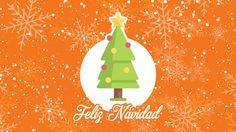 Con ustedes nuestro arbolito de #Navidad 🎄 En #HostDime también nos contagiamos con la magia de la Navidad 🌟