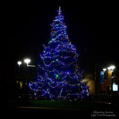 Lovely Christmas tree at the #Brighton @sussexuni Library Square. Taken last week after a backstage tour of @attenboroughctr given by the wonderfully enthusiastic and knowledgeable Creative Director Laura McDermott. #sussexuni #visitbrighton