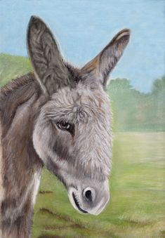 Donkey painting in pastels by Margret Heyn Donkey Drawing, Horse Paintings, Barnyard Animals, Horse Drawings, Pastel Art, Donkeys, Stone Painting, Pastels, Animals And Pets