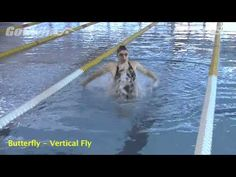 Butterfly - Veritical Fly - YouTube