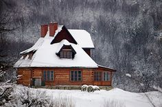 A log cabin in the mountains to spend Christmas and Snowy months....