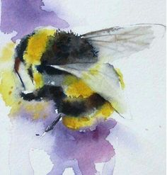 Artist Kaye Parmenter's watercolour bee from SAA facebook page