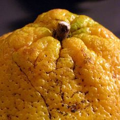 "Ugli Fruit  Native to Jamaica, ugli fruits are a combination of grapefruits, oranges, and tangerines. They are sweet and juicy, and their wrinkly, yellowish, ""ugly"" peel doesn't do the inner citrus segments justice."