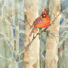 Cardinal in winter - one of the few things I like about winter