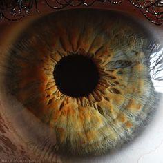 eyes  http://7rano.com/post/94698003070/niesamowite-zdj-cia-oczu