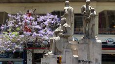 Dans le centre de la ville, de belles #statues (souvent faites par des français) et les beaux #arbres à fleurs violettes.