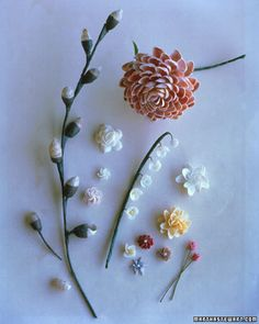 Seashell flowers + other shell crafts how to from Martha Stewart