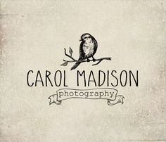 Photography Bird logo - Eps and Png file watermark - Premade custom logo - Logo for photographers