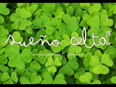 """""""Sueño Celta"""" - Pedro Sánchez (Flauta dulce) - YouTube Music Lessons, Musicals, Herbs, Teaching, Youtube, Videos, Medieval Music, Kids Songs, Primary Music"""