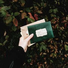 Uploaded by Camilla. Find images and videos about aesthetic, green and harry potter on We Heart It - the app to get lost in what you love. Slytherin House, Slytherin Pride, Hogwarts Houses, Hogwarts Mystery, Slytherin Aesthetic, Handwritten Letters, Draco Malfoy, Scorpius Malfoy, Hermione Granger