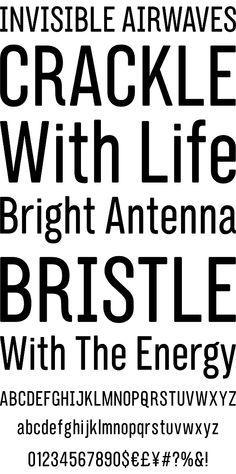 Interborough - Desktop Font & WebFont - YouWorkForThem