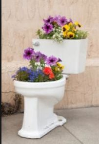 haha now thats recycling!!!!!! toilet planter