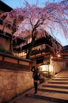 """You'll run into this on your way up to Kiyomizudera, actually. Think of this area as a """"historic shopping district."""" Kind of touristy, but a lot of fun nonetheless. Grab something to take home!"""