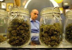 """Bloomberg: Medical marijuana a great hoax - While the majority of the public and medical community may be in support of marijuana according to recent surveys, New York City Mayor Michael Bloomberg adamantly opposed marijuana on Friday, calling the campaign for legalization """"wrong-headed.""""  --- Really - hummm.. Now do do blooms a doctor or is that dictator? grrrr"""