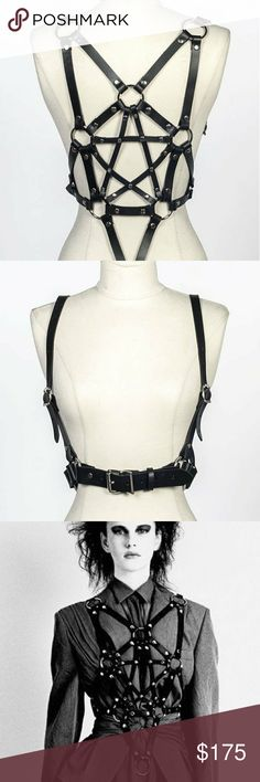 Zana Bayne pentagram harness Killer Zana Bayne pentagram harness - one of her classics. Still on her website for $375. Worn maybe twice, perfect condition. It's a M but it can fit a range of sizes. Love it but I'd like to sell so I can get a different style Zana Bayne Accessories