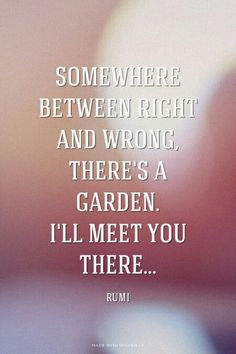 Somewhere between right and wrong, there's a garden. I'll meet you there... RUMI