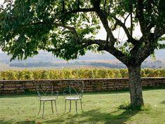Outdoor Furniture, Outdoor Decor, Vineyard, France, Park, Vine Yard, Parks, Vineyard Vines, Backyard Furniture