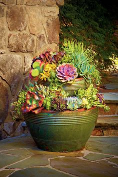 1000 ideas about patio planters on pinterest live plants planters and container vegetable - Gardening in summer heat a small survival guide ...