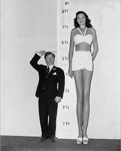 How to meet tall women