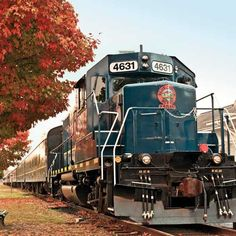Beautiful foliage abounds when you take a ride during Autumn on the #BlueRidgeScenicRailway #BlueRidgeGA  Looking forward to trying this in the Fall!!