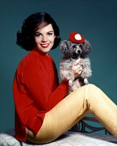 Natalie Wood    Natalie Wood and Her Gray Poodle (in a little red hat) in the late 1950s. ---my last poodle pin of the day, promise!