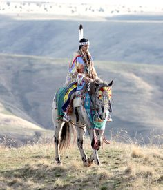 Pendleton, Oregon Nez Perce Katie Harris. The Nez Perce Horse is a spotted horse breed of the Nez Perce tribe of Idaho. The Nez Perce Horse Registry (NPHR) program began in 1995 in Lapwai, Idaho and is based on cross-breeding the old-line Appaloosa horses (the Wallowa herd) with an ancient Central Asian breed called Akhal-Teke.