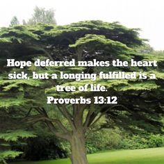 Proverbs Hope deferred makes the heart sick, but a longing fulfilled is a tree of life. Scripture Reading, Scripture Verses, Bible Scriptures, Proverbs Verses, Proverbs 13, Faith Quotes, Bible Quotes, New International Version, God Loves You