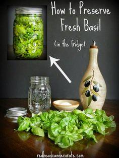 Preserving Fresh Basil