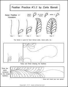 Feather Practice 5.2 by Carla Barrett
