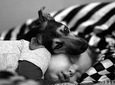Les clichés magnifiques d'un garçon et ses trois chiens
