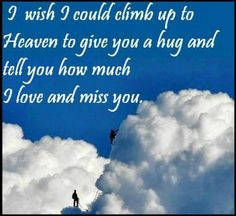 I wish I could climb up to Heaven to give you a hug and tell you how much I love you and miss you.-----  www.DebbieKrug.org