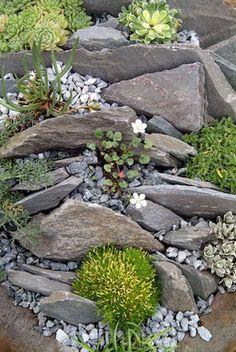 Wunderbare Steingarten Ideen Hinterhof Vorgarten - front yard landscaping ideas with rocks Landscaping With Rocks, Front Yard Landscaping, Landscaping Ideas, Rocks In Landscaping, Landscaping Plants, Inexpensive Landscaping, Natural Landscaping, Rockery Garden, Garden Arbor