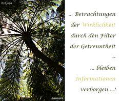 ... Betrachtungen der #Wirklichkeit durch den Filter der Getrenntheit ~ ... bleiben #Informationen verborgen ...!