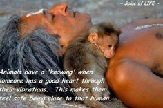 Animals have a 'knowing' when someone has a good heart through their vibrations. This makes them feel safe being close to that human. so sweet!- well, thank God that animals like me! Primates, Mammals, Beautiful Creatures, Animals Beautiful, Beautiful Flowers, Beautiful People, Baby Animals, Cute Animals, Animal Babies