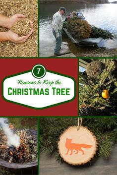 Don't junk your tree after the holidays are over. There are lots of ways to salvage part, or all, of a Christmas tree to give it a second life. Bestow an end-of-season gift on the Earth, birds, fish, or even your landscaping with one of these great Christmas tree recycling ideas.