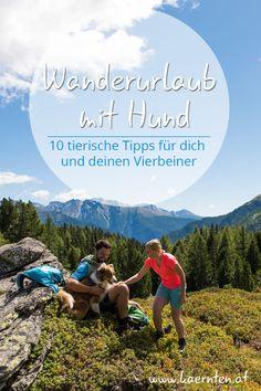 Hier findest du die interessantesten Wanderwege und Wandertipps für deinen Urlaub mit Hund in Österreich. Kärnten bietet dir Berge und Seen, Ausflugsziele und hundefreundliche Gastgeber. #wanderurlaub #kärnten #urlaubmithund #wandernmithund #urlaubinösterreich #wandern #hund Seen, Movies, Movie Posters, Hiking Trails, Road Trip Destinations, Mountains, Travel Advice, Hiking, Films
