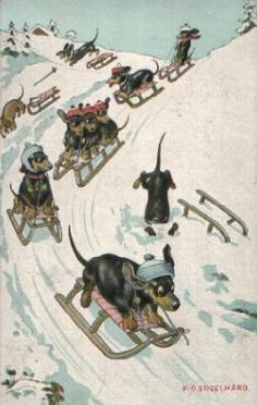 Dachshunds on Vintage Postcard