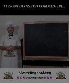 MasterBug Academy: Lezioni di Insetti Commestibili - Vantaggi e Curiosità sul Mondo degli Insetti da Mangiare. #MasterBug
