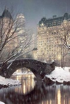 Central Park on a winter evening with the world famous Plaza Hotel.