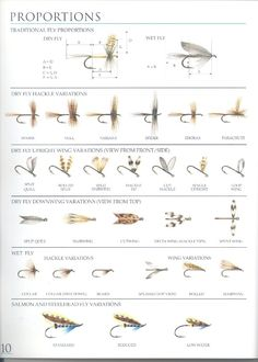 fly tying: proportions of the fly - Hľadať Googlom