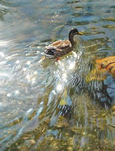 World class pastel by peter barker Pastel Landscape, Watercolor Landscape, Landscape Art, Landscape Paintings, Landscapes, Wildlife Paintings, Wildlife Art, Animal Paintings, Watercolor Water