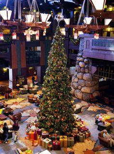 Tips for Enjoying Disneyland Christmas 2013
